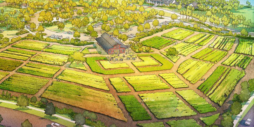 Arden's Community Farm