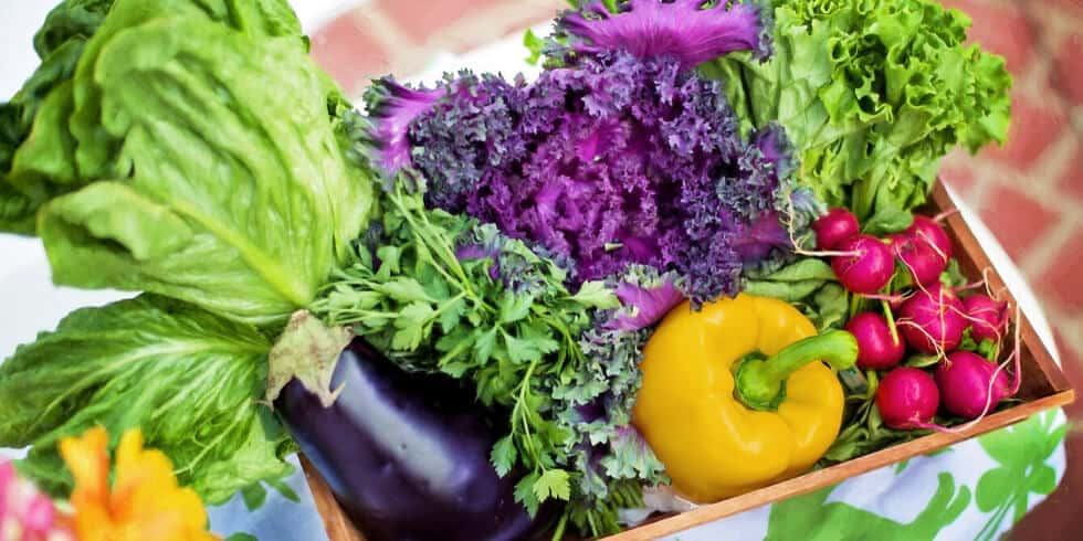 10 Tips to Keep Produce Fresh Longer